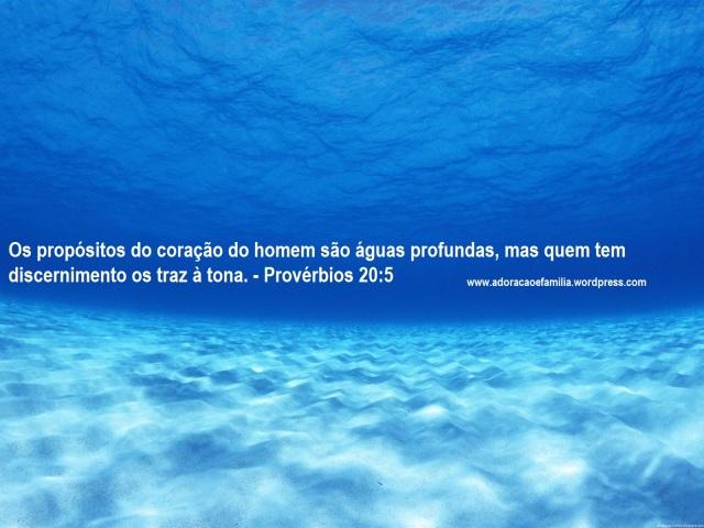 no-fundo-do-mar-wallpaper-11617