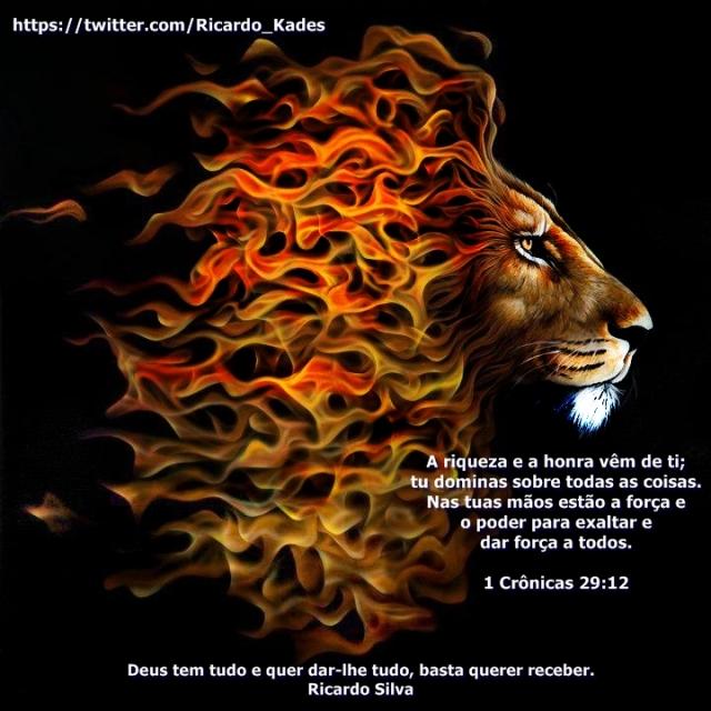 foto leão